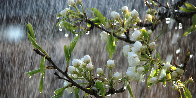 jajanan-kuliner-musim-hujan-kembang-musim-hujan