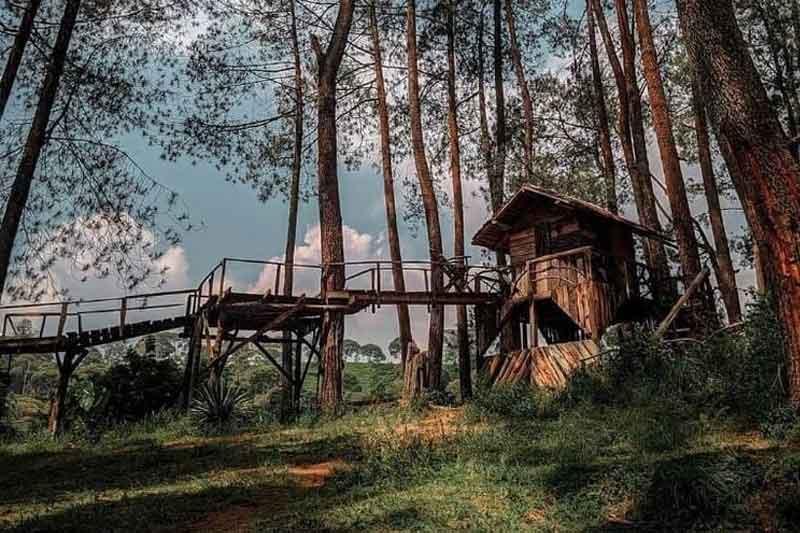 Wanawisata Kampung Rahong Pengalengan, Harga Tiket Masuk dan Rute